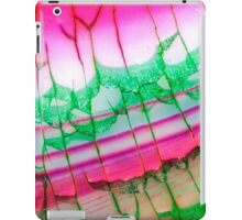 Pink Green Dragon Vein Agate Pattern iPad Case/Skin