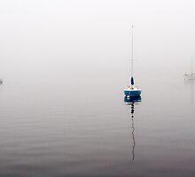 Three by David Librach - DL Photography -