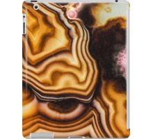 Pink Brown Turritella Agate Pattern iPad Case/Skin