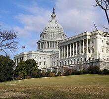 Capital Building Washington by Melissa Purves