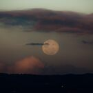 Moon rise over Adelaide Hills by pablosvista2