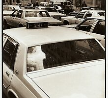 Taxis New York by Doctor4407