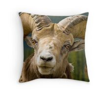 Big Horned Sheep Throw Pillow