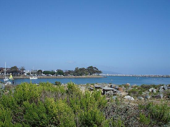 Dana Point Harbor by cfam