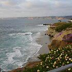 Southern California Coastline by cfam