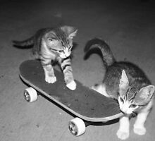 Skaters by Ellie Blum