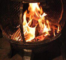 Feel the heat by lisarose