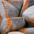 Granite Boulders, Bay of Fires, Tasmania by Jim Lovell