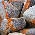 Granite Boulders, Bay of Fires, Tasmania by Jim Lovell
