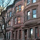 Brownstones in New York City by daydremr