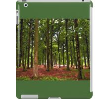 Beautiful Forest landscape iPad Case/Skin