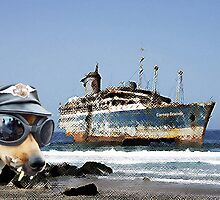 Carney Cruises, or the problem with internet booking. by reynard