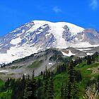 Mount Rainier 541 by jduffy111