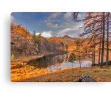 Autumn at Blea Tarn Canvas Print
