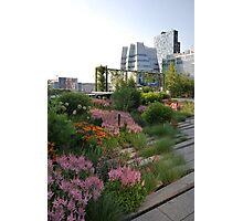 High Line Park - New York City Photographic Print