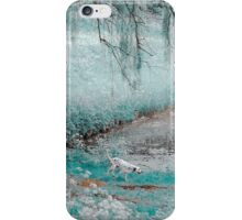 Pond Under the Shadow Willow. Nature in Alien Skin iPhone Case/Skin