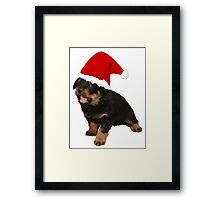 Cute Merry Christmas Puppy In Santa Hat Framed Print