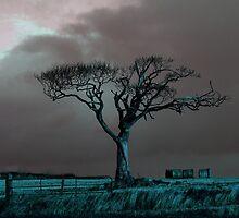 The Rihanna Tree, Angry by Wrayzo