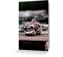 Here's Lookin At You Kid! Greeting Card