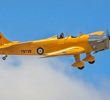 Miles M.14A Magister I T9738 G-AKAT by Colin Smedley