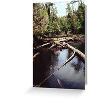 Styx River Greeting Card
