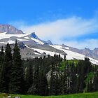 Mount Rainier 588 by jduffy111