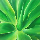 Agave  by Jane Whittred