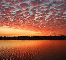 Lake Joondalup W.A by Michael  Bermingham