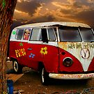 THE HIPPIES HAVE ALL GONE NOW.......... by Mugsy