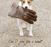 Can I give you a hand? by Paul Grinzi