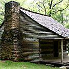 Carter Shields Cabin VI by Gary L   Suddath