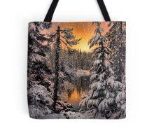 Winter Wounder Land ~ Big Lake ~ Tote Bag
