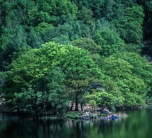 Canoist beside trees at side of Rydal Water Lake District England 198405200022 by Fred Mitchell