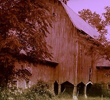 Hudson River Barn by Susan Grissom