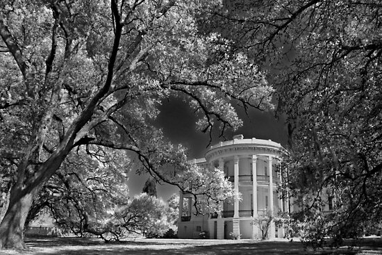 Nottaway Plantation by cclaude