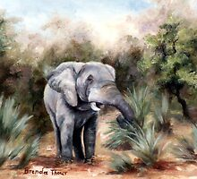 Coming Through by Brenda Thour
