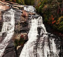 High Falls Dupont State Forest Waterfall by CrissyAnderson
