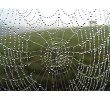 diamonds on a web Photographic Print