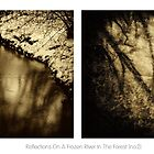 Reflections On A Frozen River In The Forest [no.2] by Solomon Walker