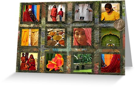 Colours of India by Sabine Spiesser