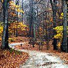 Autumns End by Carla Jensen