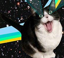 Space Cat Fluff Pillow by Trav Nash