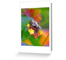 NATURE's Kaleidoscope ! Greeting Card