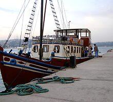 Private Bosporus Cruise Boat by Anita Donohoe