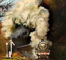 Steaming by Dave Hudspeth