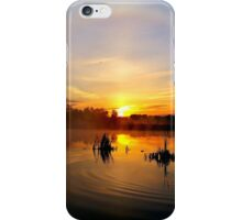 Marsh sunrise with halo and a Goose iPhone Case/Skin