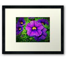 Purple lovers' flower Framed Print