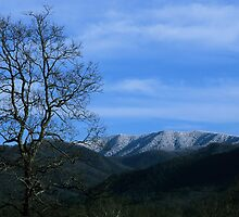 Snowy Blue Ridge by Gary L   Suddath