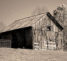 Rusty Old Barn II by Gary L   Suddath