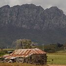 australia - tas, Mt Roland and Homestead by photoj